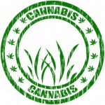 cannabis stamp: CannaSensation Rule & Legalization blog